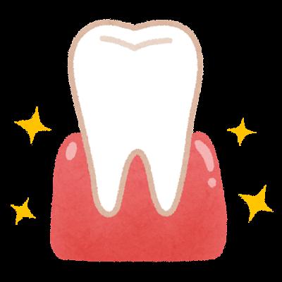 妊婦の歯茎